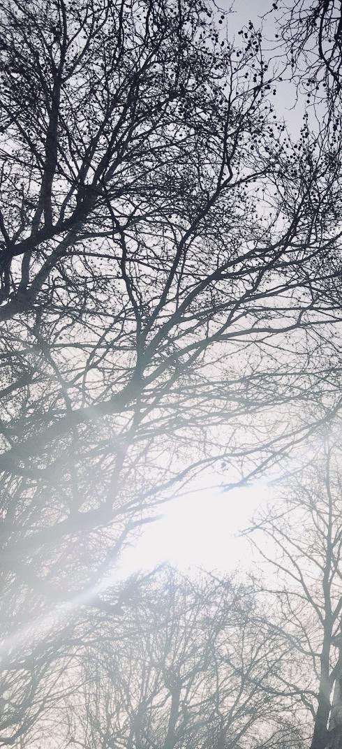 Era duminică și mă grăbeam. Ploua și era înnorat. Dar pe dinăuntrul meu era lumină și soare.