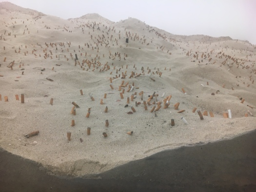 Gabriel Kuri - the beach